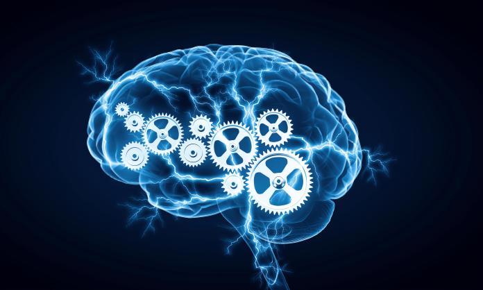 Qu'est ce que l'Intelligence ?